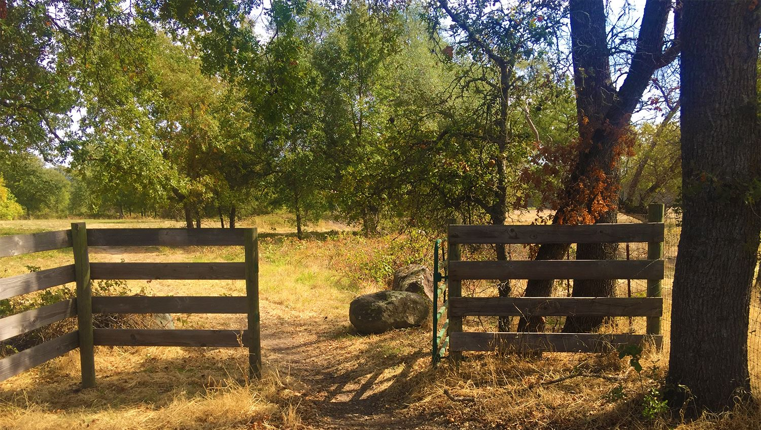 Photograph of a gated entrance at Traylor Ranch
