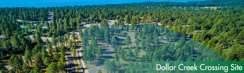 Dollar Creek Crossing Site Image in Tahoe with trees and the lake